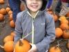pumpkin-field-trip